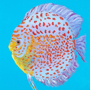 (CreativeWork) Spotted Discus Fish by Jan Matson. oil-painting. Shop online at Bluethumb.