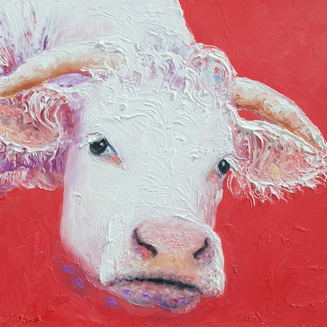 (CreativeWork) Curious Cow - framed by Jan Matson. Oil Paint. Shop online at Bluethumb.