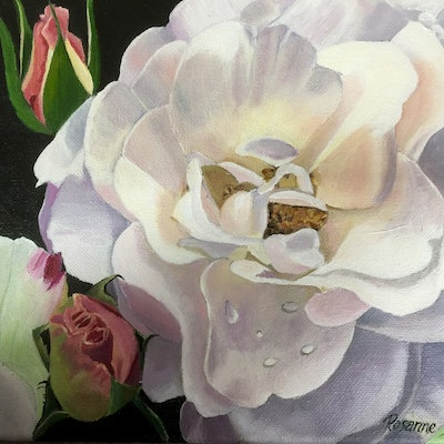 (CreativeWork) Wonderful White Rose by Rosanne Steele. #<Filter:0x0000562f867afcb8>. Shop online at Bluethumb.