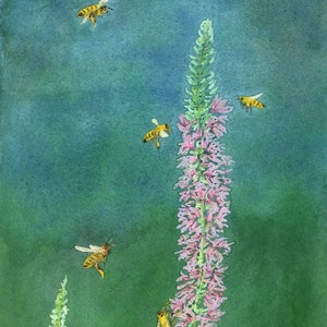 (CreativeWork) Busy bees by Jing Tian. watercolour. Shop online at Bluethumb.