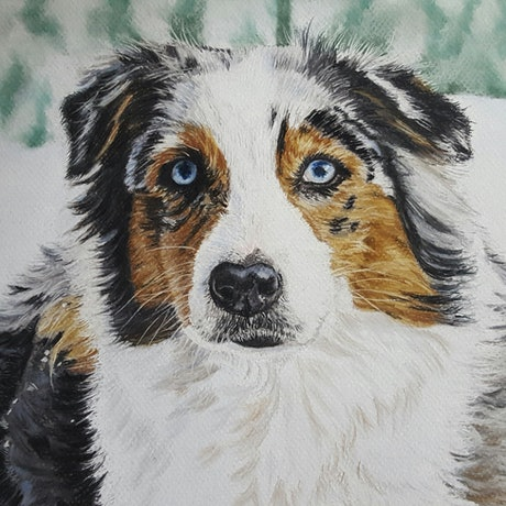 (CreativeWork) Australian Shepherd by Suzanne Perez. Other Media. Shop online at Bluethumb.