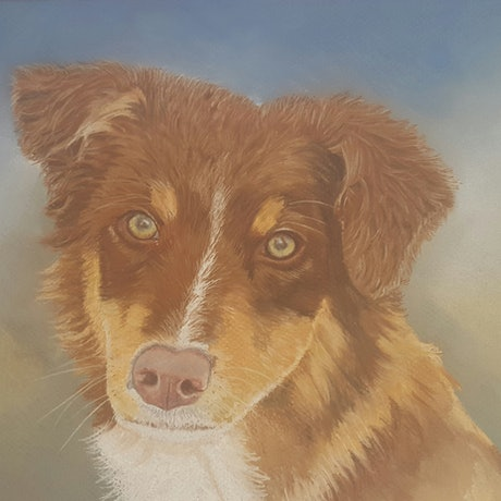 (CreativeWork) Australian Kelpie by Suzanne Perez. Other Media. Shop online at Bluethumb.