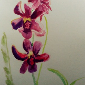 (CreativeWork) Dark Orchids by Liam Munro. watercolour. Shop online at Bluethumb.