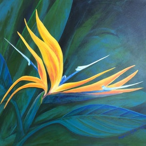 (CreativeWork) Bird of Paradise  by Jacqueline Taylor. arcylic-painting. Shop online at Bluethumb.