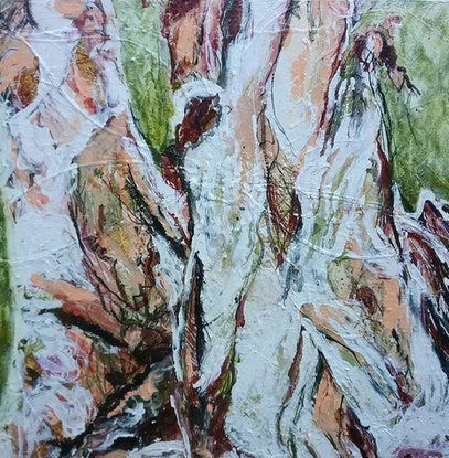 At Home With My Paper Bark Tree By Debra Dougherty