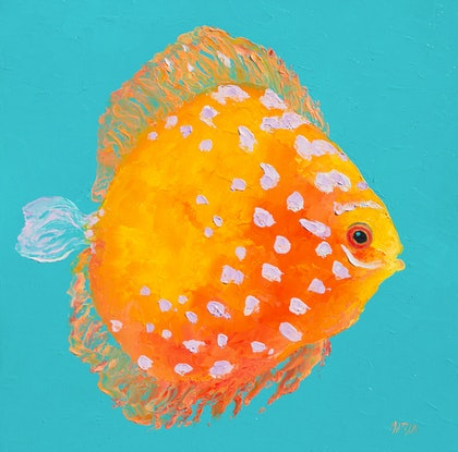 (CreativeWork) Discus Tropical Fish by Jan Matson. Oil Paint. Shop online at Bluethumb.