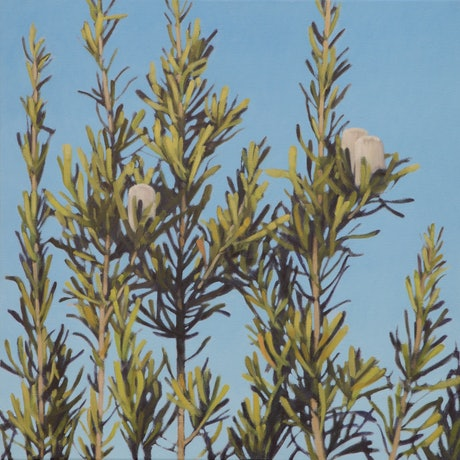 (CreativeWork) Bruce Rd Banksia XX by Stephen Travers. Oil Paint. Shop online at Bluethumb.