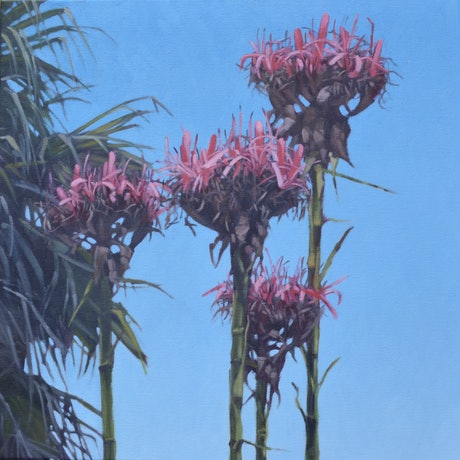 (CreativeWork) Gymea Lily Quartet by Stephen Travers. Oil Paint. Shop online at Bluethumb.