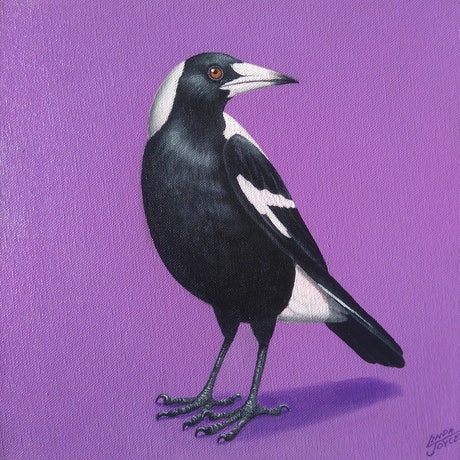 (CreativeWork) MAGPIE#1 by Linda Joyce. Acrylic Paint. Shop online at Bluethumb.