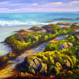 (CreativeWork) Original oil on linen - Tides out near Cape Conran, Victoria by Christopher Vidal. oil-painting. Shop online at Bluethumb.