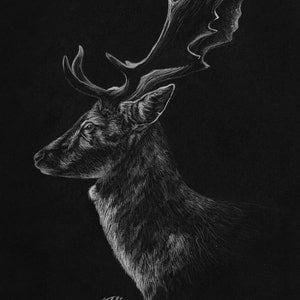 (CreativeWork) Regal by Toni McCluskey. drawing. Shop online at Bluethumb.