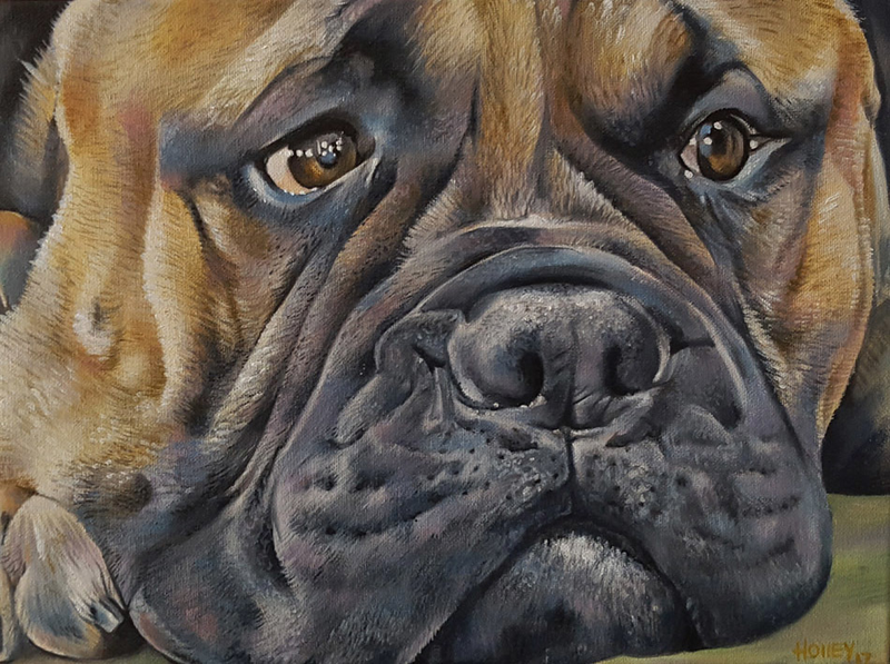 (CreativeWork) Bull Mastiff by Holley Ryan. oil-painting. Shop online at Bluethumb.