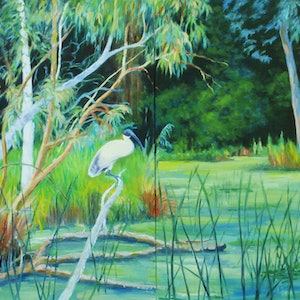 (CreativeWork) Ibis on Christopher Bailey Billabong in Ivanhoe by Dai Wynn. oil-painting. Shop online at Bluethumb.