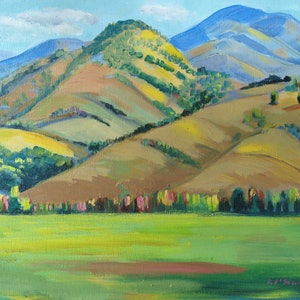 (CreativeWork) Allyn River ,Barrington Tops via Gulgong, NSW by Virginia McGowan. oil-painting. Shop online at Bluethumb.