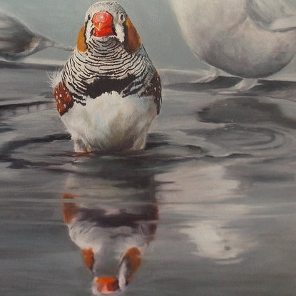 (CreativeWork) The standout by Rebecca Hill. Oil Paint. Shop online at Bluethumb.