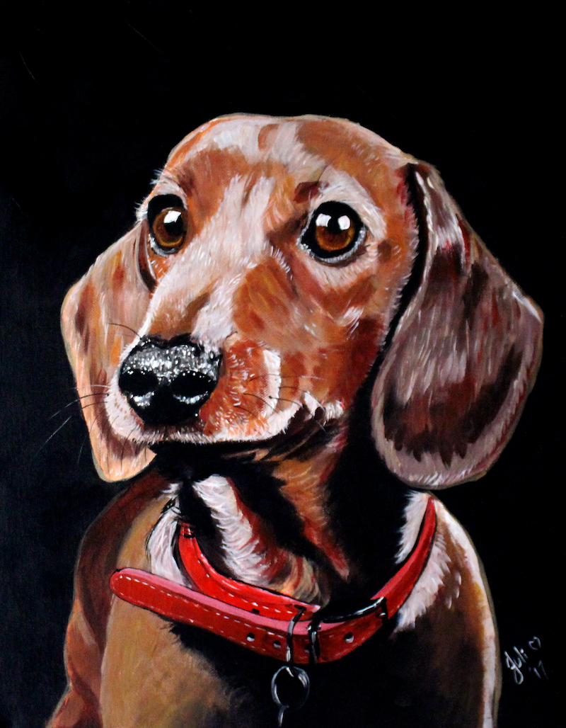 (CreativeWork) Dachshund Poised by Julie Hollis. arcylic-painting. Shop online at Bluethumb.