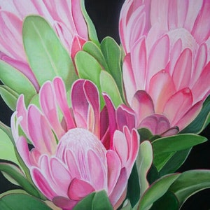 (CreativeWork) Proteas by Tracey Hall. oil-painting. Shop online at Bluethumb.