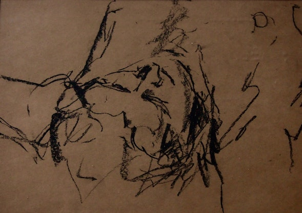 (CreativeWork) Rested by Victoria ter Kuile. Drawings. Shop online at Bluethumb.