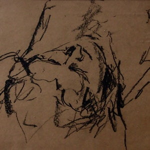 (CreativeWork) Rested by Victoria ter Kuile. drawing. Shop online at Bluethumb.