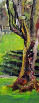 (CreativeWork) CYCLIST RESTING IN THE SOUTH PARKLANDS by Maureen Finck. Oil Paint. Shop online at Bluethumb.