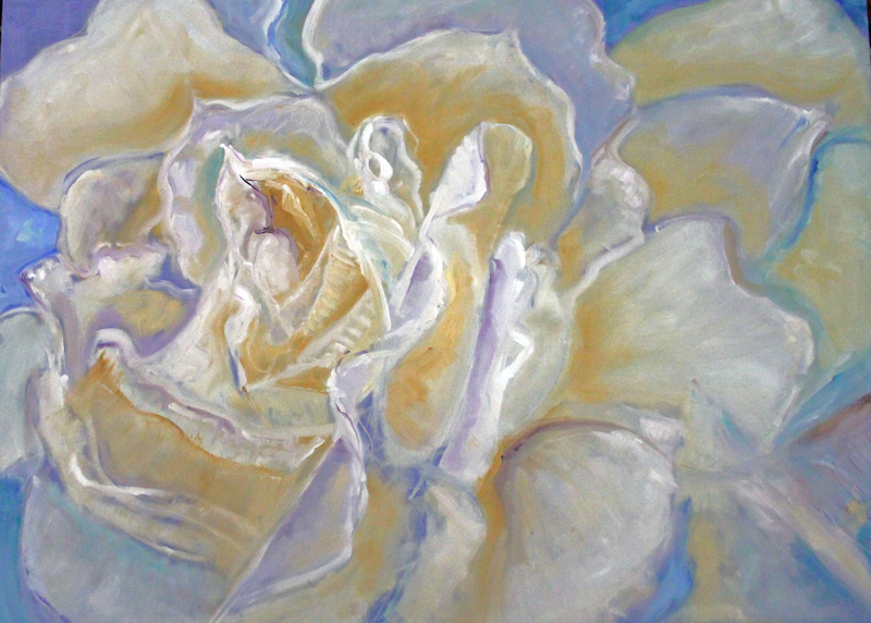(CreativeWork) THE WHITE ROSE by Maureen Finck. oil-painting. Shop online at Bluethumb.
