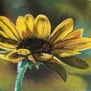 (CreativeWork) Sunflower  by Lisa Hearl. other-media. Shop online at Bluethumb.