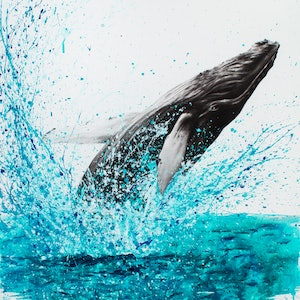 (CreativeWork) Burleigh Heads Humpback by Ashvin Harrison. arcylic-painting. Shop online at Bluethumb.