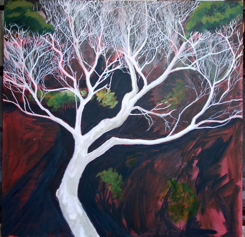 (CreativeWork) Dancing tea tree by Pete GAILEY. oil-painting. Shop online at Bluethumb.
