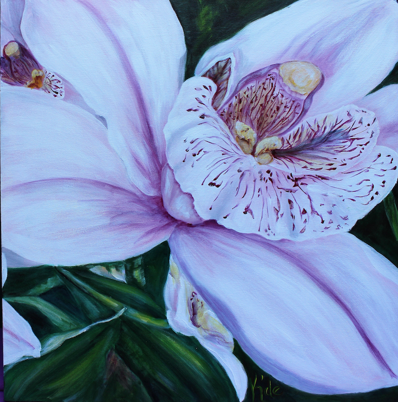 (CreativeWork) Orchard by Kathryn deBoer Ipsen. acrylic-painting. Shop online at Bluethumb.