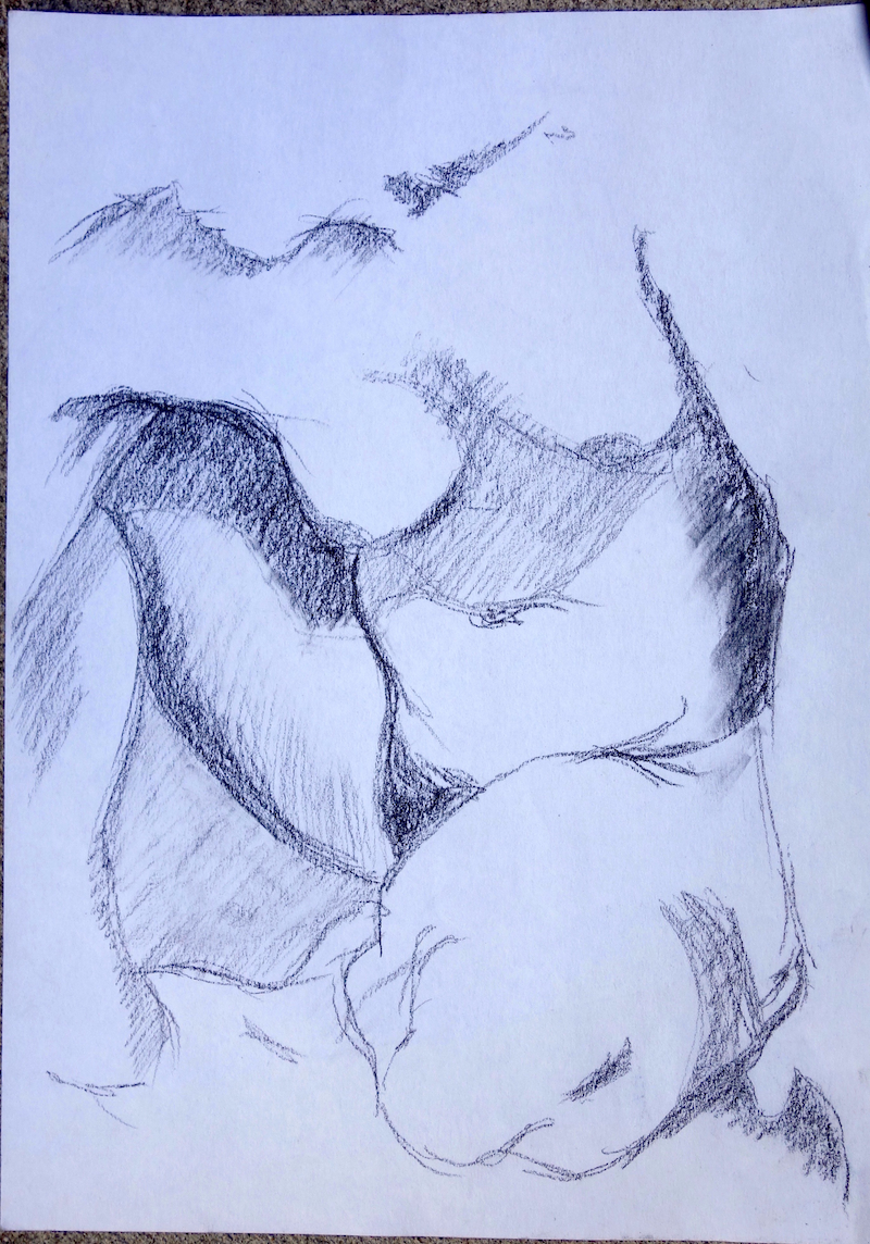 (CreativeWork) life drawing study 3 by Pete GAILEY. drawing. Shop online at Bluethumb.