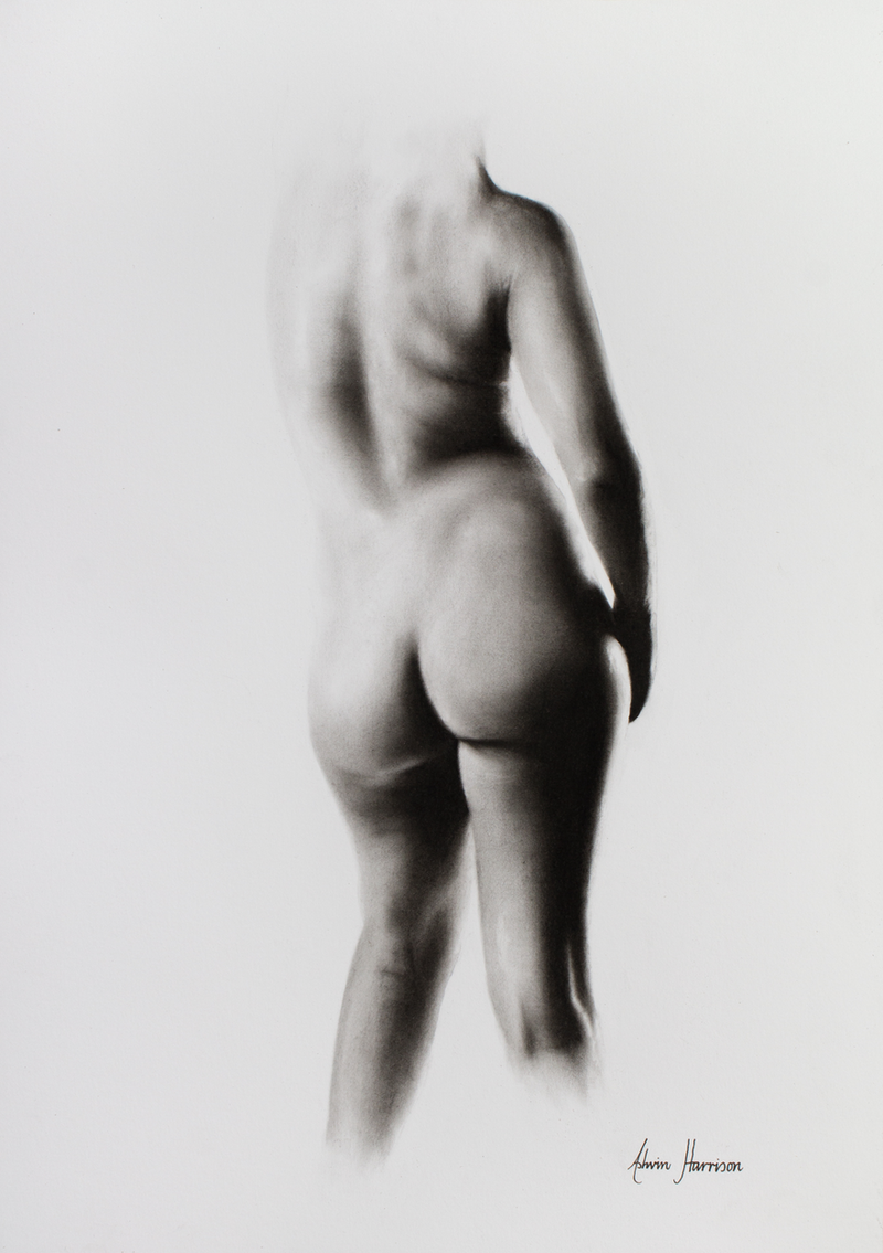 (CreativeWork) Nude Woman Charcoal Study 45 by Ashvin Harrison. drawing. Shop online at Bluethumb.