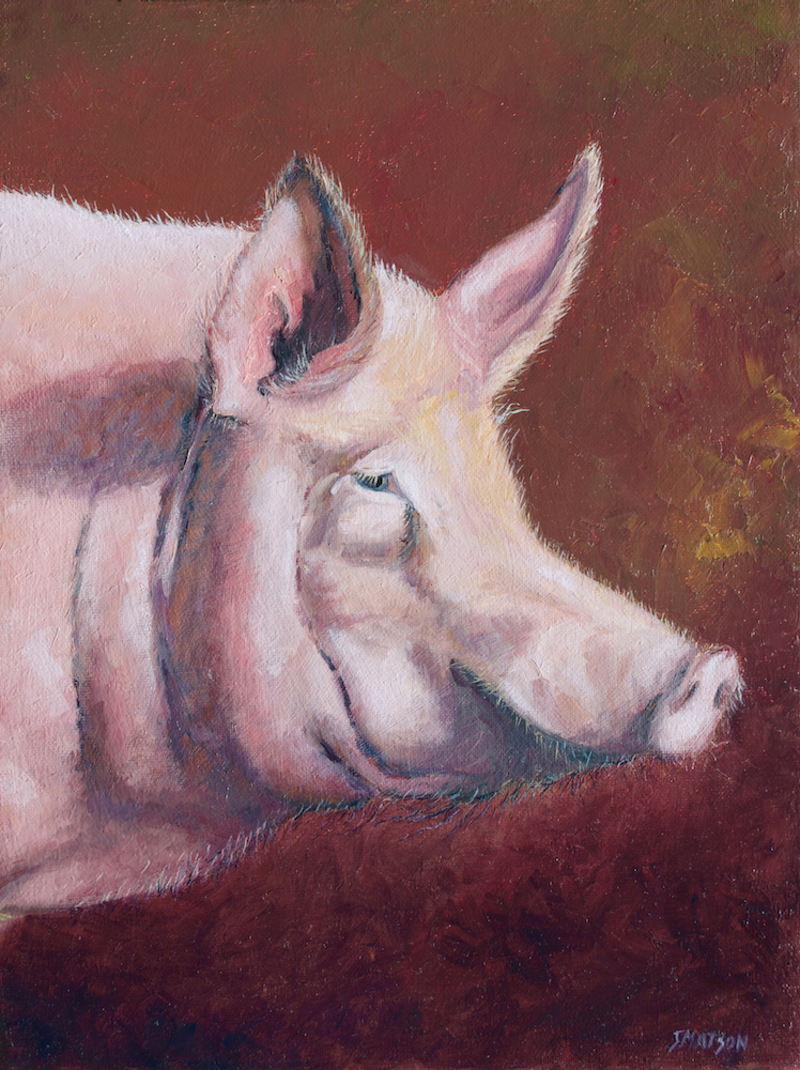 (CreativeWork) Pig - Pierre by Jan Matson. oil-painting. Shop online at Bluethumb.