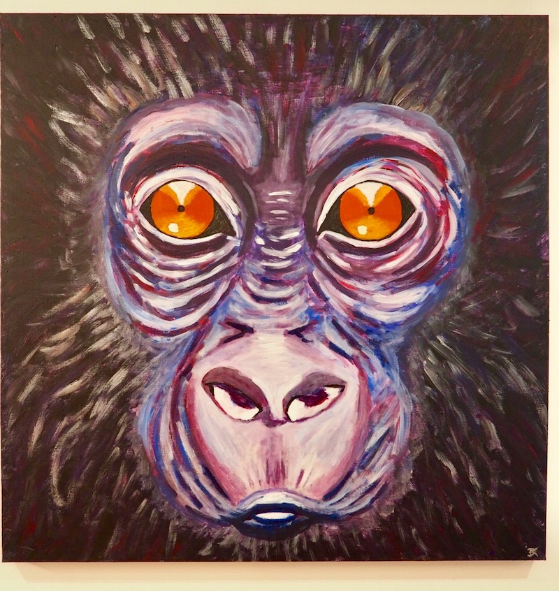 (CreativeWork) Baby gorilla by Deb Krinas. acrylic-painting. Shop online at Bluethumb.