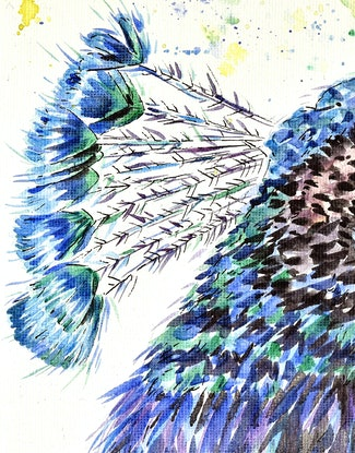 (CreativeWork) P Is For Peacock by Luna Vermeulen. Watercolour Paint. Shop online at Bluethumb.