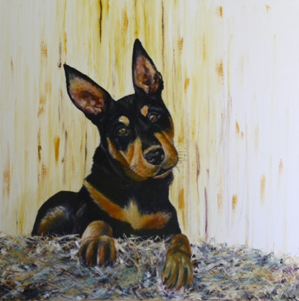 (CreativeWork) In Training - The Kelpie by Angie Aubert. oil-painting. Shop online at Bluethumb.