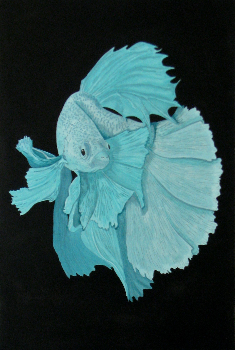 (CreativeWork) Fighting Fish 5 Green by Julie-Anne Gatehouse. Acrylic Paint. Shop online at Bluethumb.