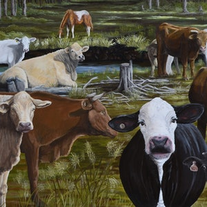 (CreativeWork) Kilkivan Country  by Fiona Groom. arcylic-painting. Shop online at Bluethumb.