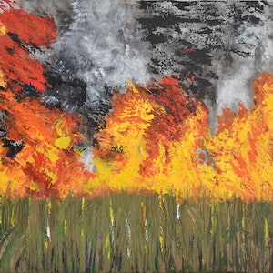 "(CreativeWork) Burn Off - No 3 in ""Cane Fire"" Series  by Deborah Christensen. acrylic-painting. Shop online at Bluethumb."