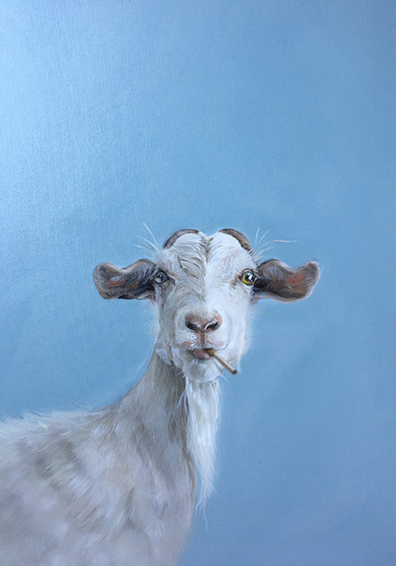 (CreativeWork) Bill by Donna Christie. Oil Paint. Shop online at Bluethumb.