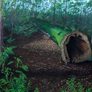 (CreativeWork) Fallen Moss Covered Tree by John N Mason. arcylic-painting. Shop online at Bluethumb.