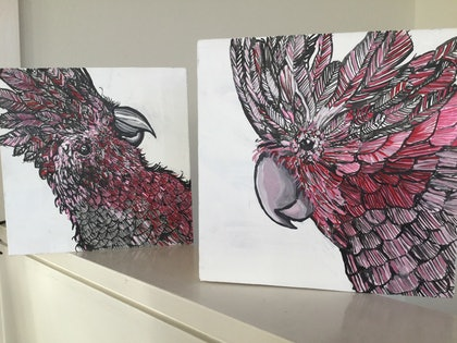 (CreativeWork) Loud galahs by Karynne Ledger. arcylic-painting. Shop online at Bluethumb.
