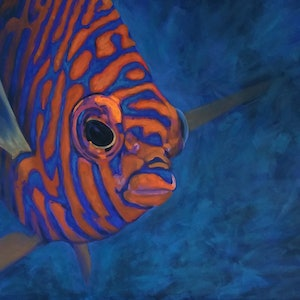 (CreativeWork) Potter ( potters angel fish) by Naomi Veitch. arcylic-painting. Shop online at Bluethumb.