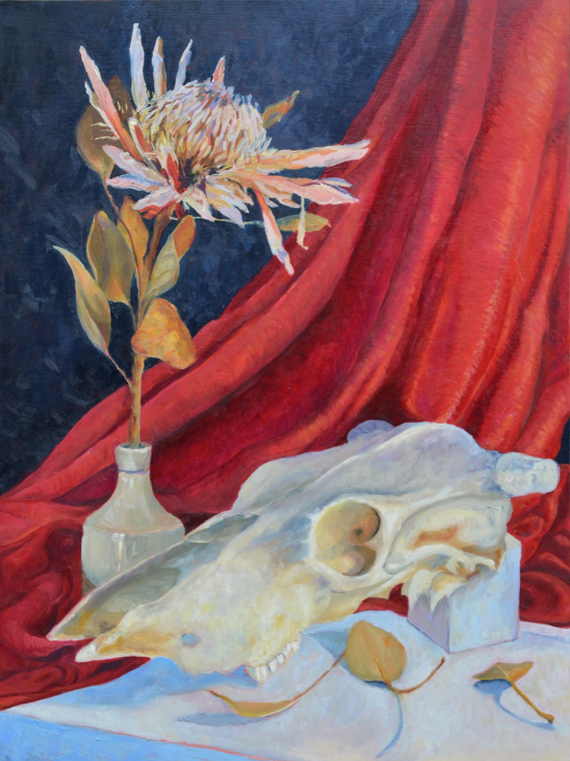 (CreativeWork) Skull and Flower by Lydie Paton. oil-painting. Shop online at Bluethumb.
