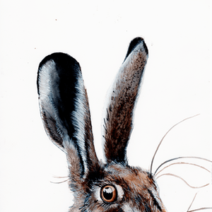 (CreativeWork) HELLO I HARE YOU! by Fran Pidgeon. watercolour. Shop online at Bluethumb.