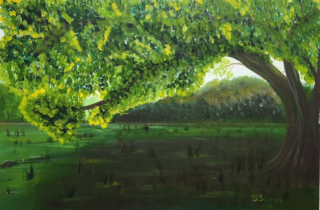 (CreativeWork) Green Tree in the Yarra Glen by Stephanie Siomos. Acrylic Paint. Shop online at Bluethumb.