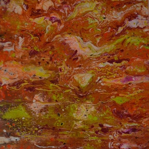 (CreativeWork) Fire and Flight by Sue Shakeshaft. arcylic-painting. Shop online at Bluethumb.