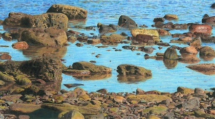 (CreativeWork) Long Reef at midday Ed. 3 of 10 by Sim Hunt. print. Shop online at Bluethumb.