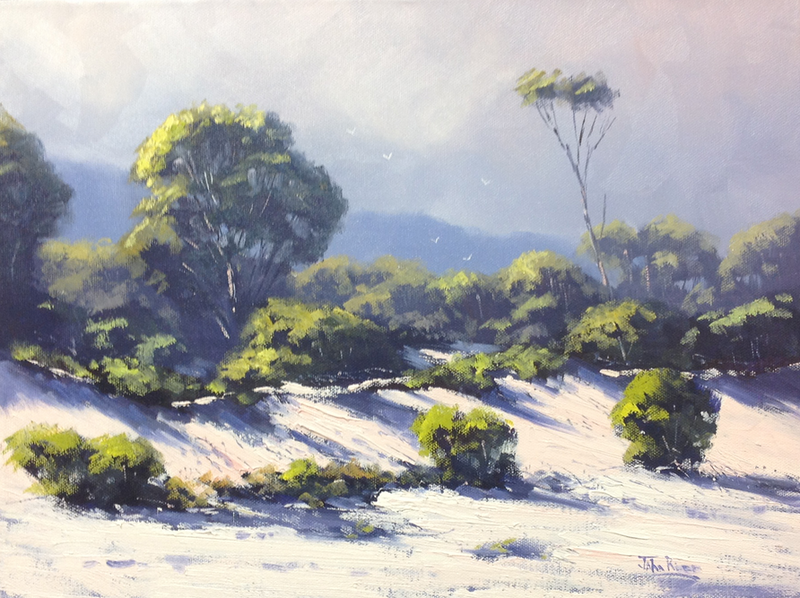 (CreativeWork) Maria Island Dunes by John Rice. Oil Paint. Shop online at Bluethumb.