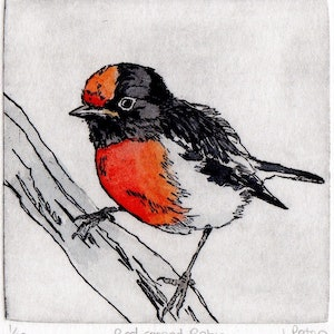 (CreativeWork) Red-capped Robin on a branch by Lydie Paton. mixed-media. Shop online at Bluethumb.