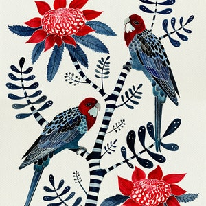(CreativeWork) Crimson Rosellas and Waratahs by Sally Browne. watercolour. Shop online at Bluethumb.